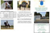 Triptico Centro Militar de Cria Caballar de Jerez - GC Ecuestre