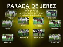 PARADA DE SEMENTALES DE JEREZ - GC Ecuestre